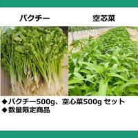 パクチー500g + 空芯菜500g バルク包装品(1kg) (税・送料込み *北海道・九州・離島はプラス300円)