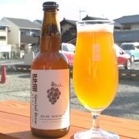 【近江麦酒】今月のバラエティ6本セット