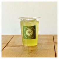 アイス水出しPremium Shiga 玉露【店頭受払商品】                        ¥500(税込)