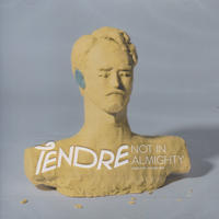 TENDRE / NOT IN ALMIGHTY / CD