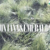 Jintana & Emeralds / Summer Begins / 7inch