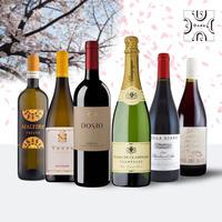 Ondaセレクション厳選6本セット  送料無料