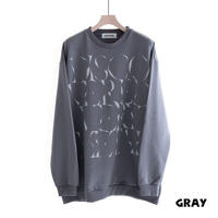 DISCOVERED GRAPH PRINT SWEAT(GRAY)
