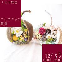 ブッダナッツ教室【12/5日曜10:00〜/2021秋】
