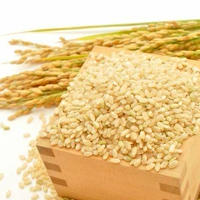 新米【 いっぺん食べてみ米 】玄米 1kg ー 農家さん直送 <全国送料無料>