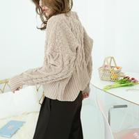数量限定/ケーブルzigzag knit