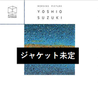 予約受付中(国内LP / NEW)鈴木良雄 / MORNING PICTURE