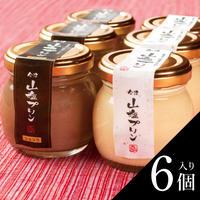 会津山塩プリン「ミックス」(6個入り)