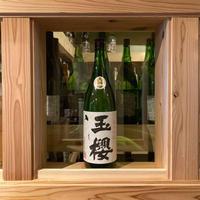 【引き締まった吟醸】玉櫻 秋あがり 金櫻〈たまざくら〉純米吟醸/1800ml/島根・玉櫻酒造