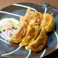 冷凍マジレモン生餃子【60個】