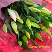 2021母の日【Bunch of Lilies L】ユリ7本を束ねました!日にち指定不可<(_ _)>5/2~5/8のいずれかで発送します。