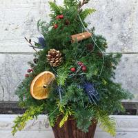 miniクリスマスツリー