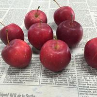 姫りんご 3個セット