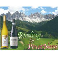 【贈答ワイン 2本セット】イタリア 北部モノセパージュ