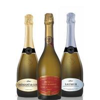 【お得なワインセット】スパークリングワイン 3本セット フランス ジャイアンス ワイン飲み比べ ホームパーティー 750ml×3 簡易包装(OG00-JACSB3)