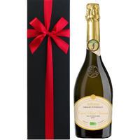 【ワインギフト】ビオ・スパークリングワイン フランス 辛口 750ml ジャイアンス 「キュヴェ・サン・ヴァンサン・ブリュット」 シャンパン製法 「クレマン・ド・ボルドー」(OG15-BJASVB)