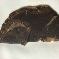 オーストラリア産・ボルダーオパール原石のスライス(9.5㎝×5㎝×1㎝)