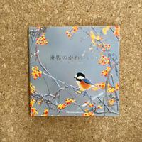 【中古絵本】『世界のかわいい小鳥~Little Birds~』