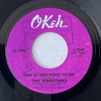 THE VIBRATIONS / Gonna Get Along Without You Now