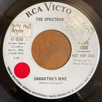 THE SPECTRUM / Samantha's Mine
