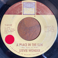 STEVIE WONDER / A Place In The Sun