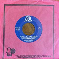THE INTERPERTATIONS / Soul Affection