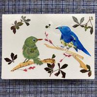 The Birds Sing(2つ折り/封筒付)