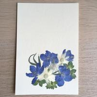 夏のブーケ(Post Card)
