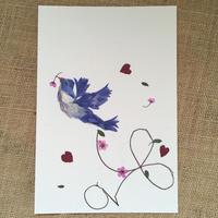 飛跡 (Post Card)