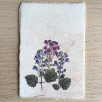 和紙はがきM05 (Post Card)