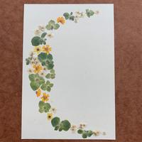 クレッセント2019Winter (Post Card)