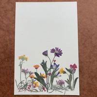 プチ・ジャルダン2019(Post Card)
