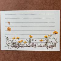カンバセーション (Post Card)