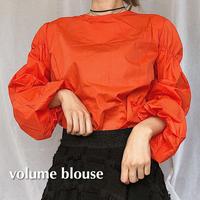 #66 volume blouse
