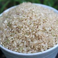 小谷村産米 ゆめしなの【新米】〈玄米〉3kg 《税込・送料無料》