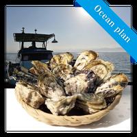 男気牡蠣(殻付き生食用)ロープ3本分 男気オーシャンオーナープラン 限定30口