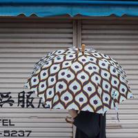 Sun miの傘 紺(50cm)