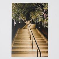 ポストカード(夜景紅葉の階段)