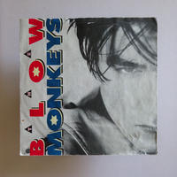 The Blow Monkeys / It Doesn't Have To Be This Way