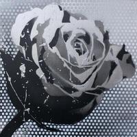 Paint Rose L30 -Silver Dot-