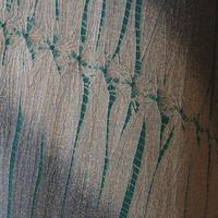 【袷】斜め縞に絞り柄小紋