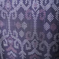 【袷羽織】紫色地 オリエンタル文 大島紬 羽織