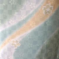 【単衣】ライトグリーン暈し 曲線に桜柄 小紋