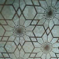 【紗袷・羽織】寒色系 鉄線文 紗袷 羽織