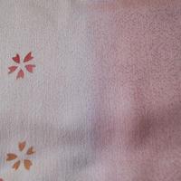 【帯揚げ】淡桃色×生成り色暈かし 桜飛び文 帯揚げ №210403b