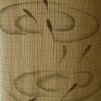 【夏・絽】黄朽葉色 (キクチバイロ)地 水面にめだか 附下 化繊