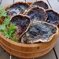 海男(佐賀県有明海)岩牡蠣 花美 6個入り