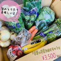 季節の野菜お任せセット(3,500円)