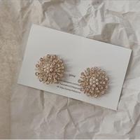 Dandelion pierce & earring