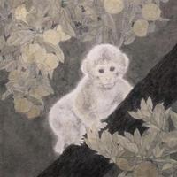 佐藤真美 [猿, S3号]